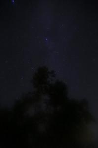 銀河もみじキャンプ場の星空2