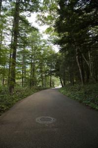 上高地~かっぱ橋2